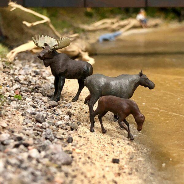 HO scale model moose